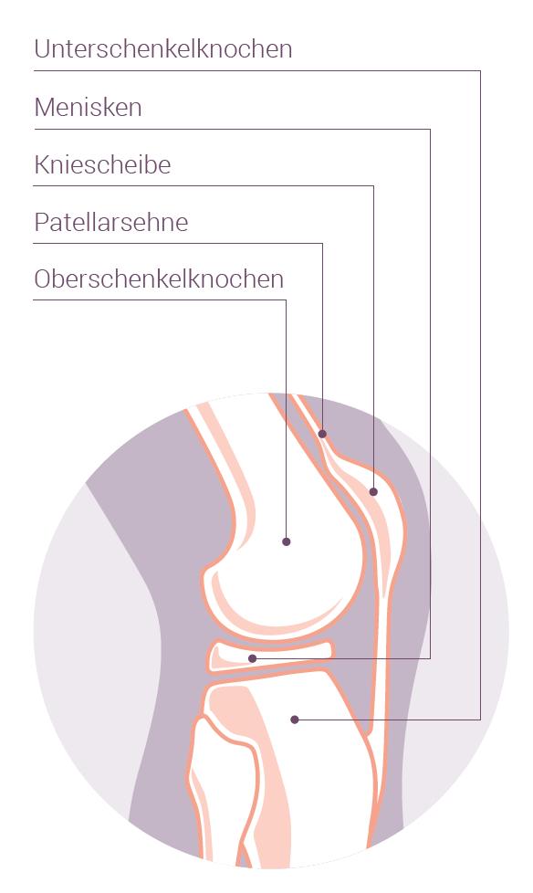 Knieschmerzen, Kreuzbandriss, Meniskusverletzung – SWISSKLINIK